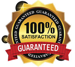100 percent guaranteed transparent back ground 300 300